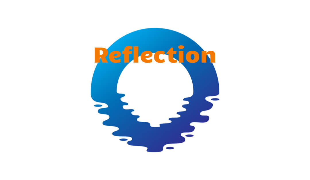 Reflection from workshops and meetings