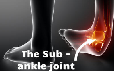 The Second Ankle Joint